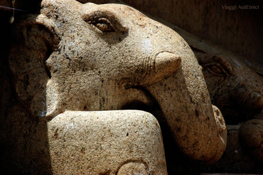 sri lanka elefante pietra