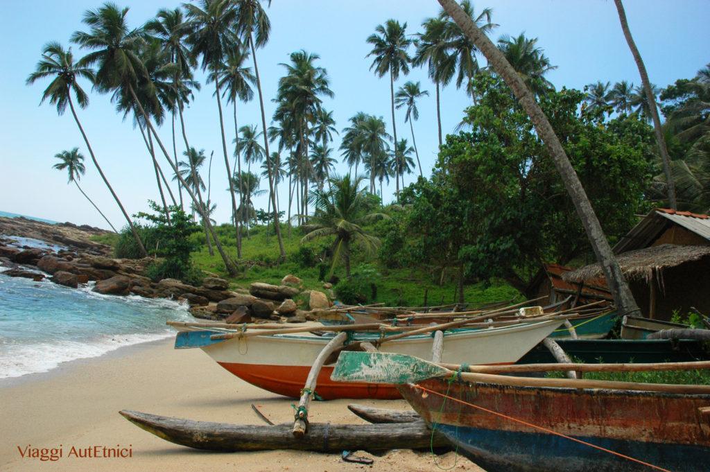 Sri Lanka mare spiaggia barche