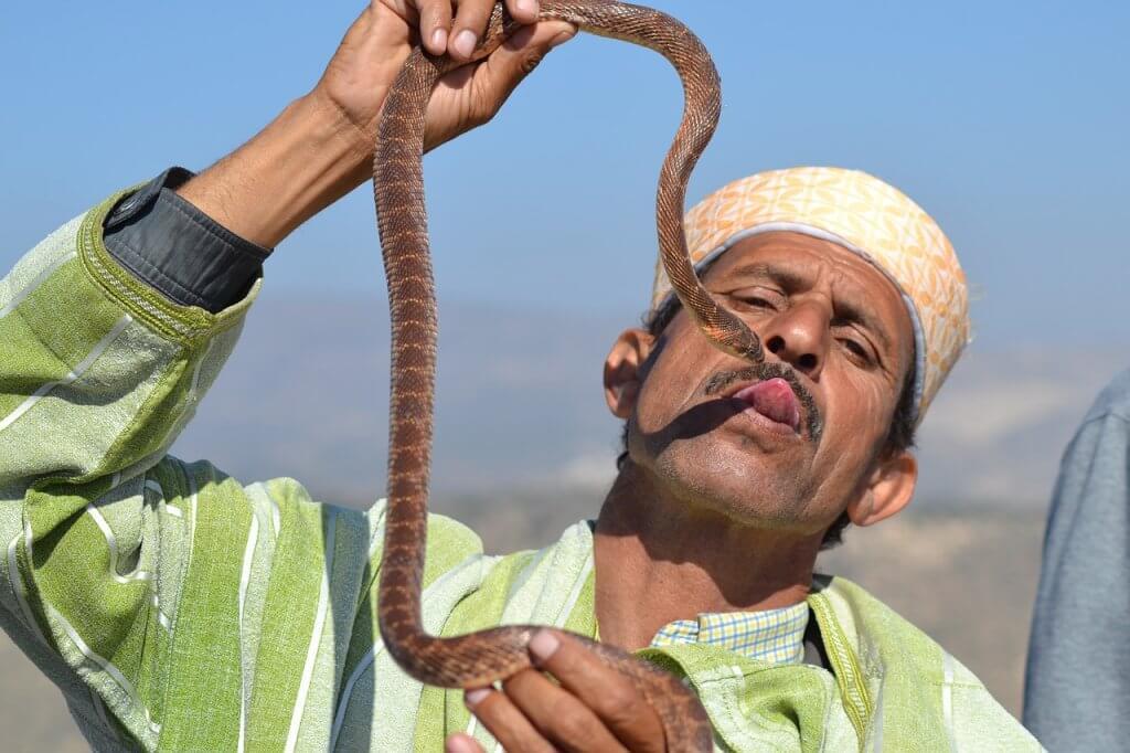 uomo serpente piazza marrakech